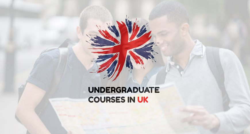 Undergraduate Course in UK